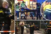 تصاویر/ تیراندازی آمستردام