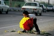 320 کودک کار در مشهد ساماندهی شدند
