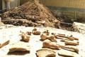 سرنوشت نامعلوم استخوان های باستانی تخت جمشید