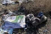 انتقاد یک حقوقدان از وضعیت پرونده فاجعه هواپیمای اوکراینی: یک سال گذشت و در همچنان برهمان پاشنه می چرخد!