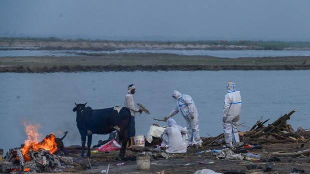 حکایت عجیب کرونا در هند؛ پهن کردن تور در یک رودخانه برای جمع آوری اجساد