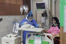 دامپزشکی استان مرکزی ۶ هزار قلم تجهیزات بهداشتی اهدا کرد