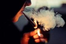 85 درصد مبتلایان به سرطان ریه سیگاری هستند