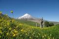 پیکر کوهنورد اصفهانی در کوه دماوند پیدا شد