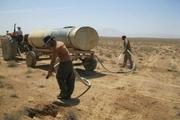 گونههای مقاوم به خشکی در ۲۷۵۰ هکتار اراضی استان سمنان کاشته شد