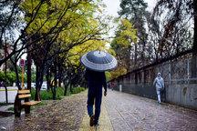 بارش باران در بروجرد به 334 میلیمتر رسید