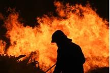 حادثه آتش سوزی کارگاه رنگ کاری در کهریزک 2 فوتی داشت