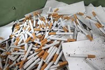 90 هزار و 400 نخ سیگار قاچاق در خدابنده کشف شد