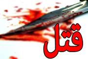 بازگشت زنی که همسرش را با کمک معشوقه خود به قتل رسانده بود به ایران