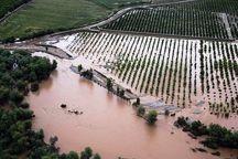 ۱۲۰ میلیارد ریال از خسارت سیل به کشاورزان دزفول پرداخت شد