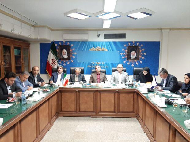 سه هزار و ۵۰۰ فرصت اشتغال روستایی در استان مرکزی ایجاد شد