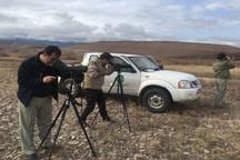 106 هزار بال پرنده در زیستگاه های آذربایجان غربی سرشماری شد