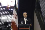 علی اکبر صالحی خبر داد: ظرفیت تولید 60 سانترفیوژ مدرن فراهم شد