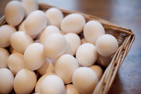 قیمت هر کیلو تخم مرغ ۷ هزار و ۸۰۰ تومان