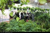 کاروان بهاری گل و گیاه به نمایشگاه شیراز رسید