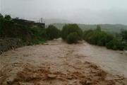 باغ های جاده قزوین-فارسیان دچار خسارت شدند