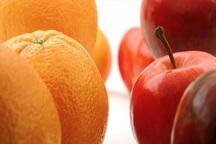 خرید و ذخیره سازی 3700 تن میوه شب عید قطعی شد
