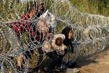 آمار تکاندهنده از پناهجویانی که قربانی مدیترانه شدند