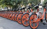 نکاتی که پیش از دوچرخه سواری باید بدانید
