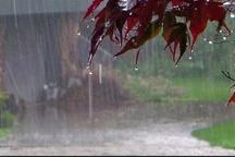 بارشهای سال زراعی مبنای قضاوت آب استان نیست  نیازمند مدیریت صحیح منابع آبی هستیم