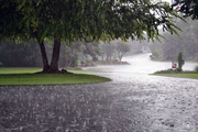 ۶۵ میلی متر بارش در کردلان دشتی ثبت شد