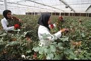 بنیاد برکت ۲۸۴ فرصت شغلی در خمین ایجاد کرد