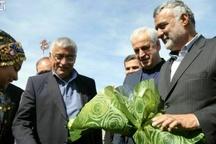 وزیر جهاد کشاورزی به سیستان و بلوچستان سفر میکند