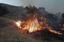 آتش سوزی در عرصه های طبیعی خراسان شمالی 74 درصد کاهش یافت
