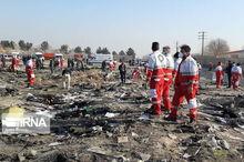 دو تن از مسافران پرواز تهران - اوکراین کرمانی بودند