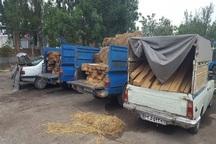 92 اصله چوب آلات قاچاق جنگلی در اردبیل کشف شد