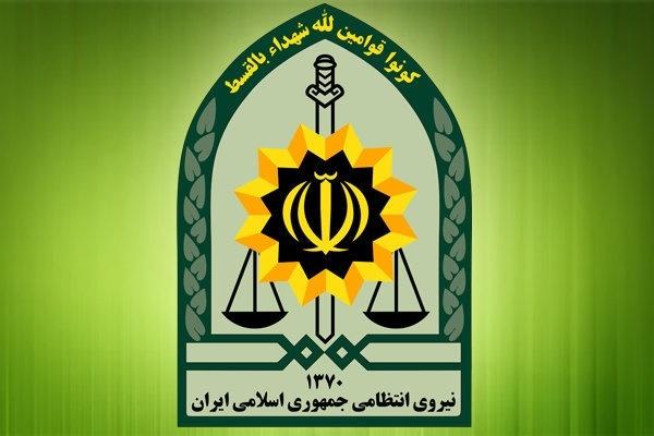 عاملان انتشار عکس های حاشیه ساز در پارک تهران بازداشت شدند