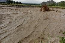 سیلاب72هزار و527 میلیون ریال به بخش کشاورزی میرجاوه خسارت زد