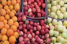950 تُن میوه برای تنظیم بازار شب عید سمنان ذخیره شد