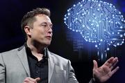 مغز انسان به رایانه متصل خواهد شد!