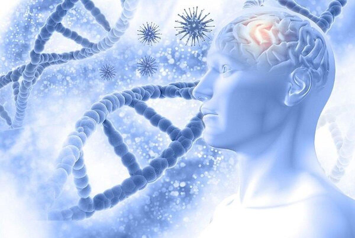 تاثیر ورزش در جلوگیری از آلزایمر