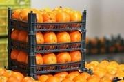 بیش از سههزار تن میوه نوروز ۹۹ در خوزستان توزیع شد