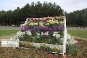 بیشاز ۴۱۰ هزار نشا گل در زاهدان کشت شد