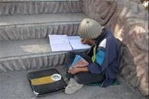 62 کودک کار و خیابان در البرز راهی مدرسه شدند