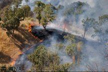 370 هزار هکتار مرتع و جنگل سمنان سال گذشته در آتش سوخت