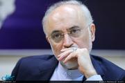 واکنش علی اکبر صالحی به فعال شدن مکانیسم ماشه