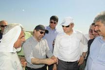 سفیر ترکمنستان از سایت میگوی گُمیشان دیدن کرد