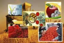 افزون بر 20 واحد صنایع تبدیلی در فهرج راه اندازی شد