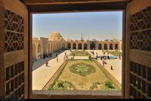 کرمان ظرفیت تبدیل شدن پایلوت گردشگری هنری را دارد
