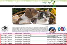ارز دولتی برای غذای سگ و گربه؟