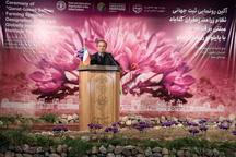مراسم ثبت جهانی زراعت زعفران مبتنی بر قنات در روستای سنو برگزار شد