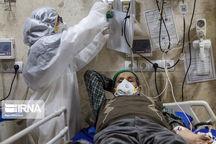 تعداد مبتلایان کرونا در یزد به ۴۷۱ نفر افزایش یافت