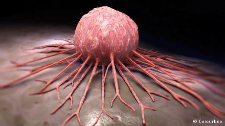 آنتیبیوتیک ضدسرطان تولید شد