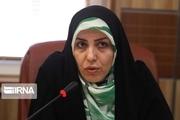 ۹ سمن در حوزه رفع مشکلات زنان قزوین فعالیت میکنند