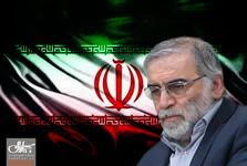 همه واکنش ها به ترور دانشمند هسته ای ایران