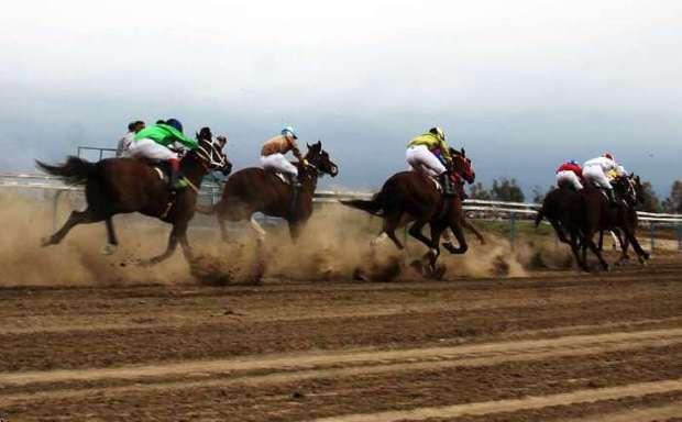 مسابقات اسبدوانی بهاره گنبد از 17 فروردین شروع می شود